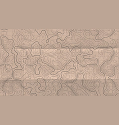 Topographic line map abstract concept topographic vector