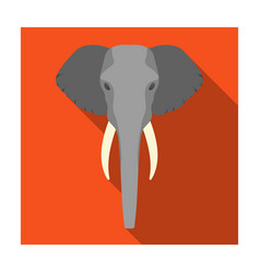elephant icon in flat style isolated on white vector image vector image