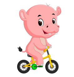 cute hippopotamus bicycling vector image vector image