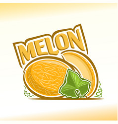 melon still life vector image