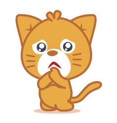 sad cat pets of character vector image