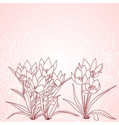 spring tulips background vector image vector image