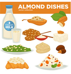 Almond nut dishes food drink and dessert vector