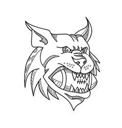 Bobcat american football mono line vector
