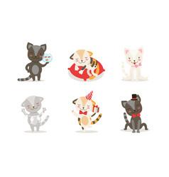 cute kittens cartoon characters set adorable vector image