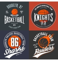 Design for basketball fans usa new york brooklyn vector image