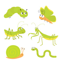 Green insect icon set mantis praying grasshopper vector