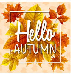 hello autumn leaves with drop water vector image