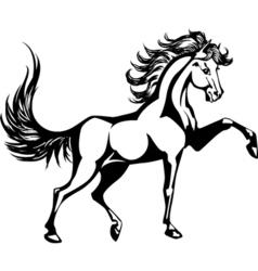 Horse 5 vector