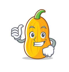Thumbs up butternut squash character cartoon vector