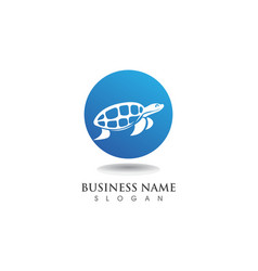 Turtle animal cartoon image design vector