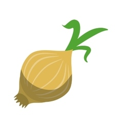 white onion vegetable nutrition sprout icon shadow vector image