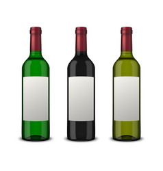 set 3 realistic bottles of wine with blank vector image
