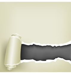 wrapped paper vector image vector image