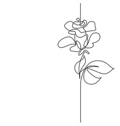 Continuous line drawing of beautiful flower vector