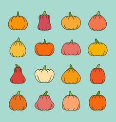 different shapes pumpkin harvest line icon set vector image