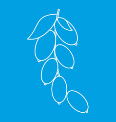 Dogwood berries icon outline style vector