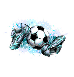 football boots with ball from a splash of vector image