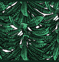 Tropical leaves dense jungle seamless pattern vector
