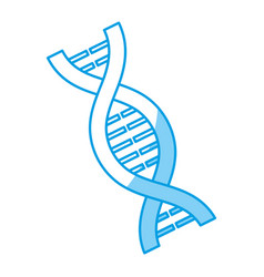 dna chain icon vector image