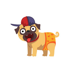 Funny pug dog character wearing in baseball cap vector