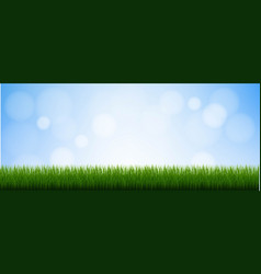 Green grass isolated blue background vector