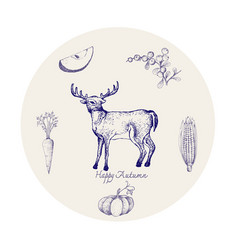 Hand drawn whitetail deer with autumn fruits an vector