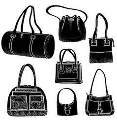 handbags set fashion accessory women bag vector image