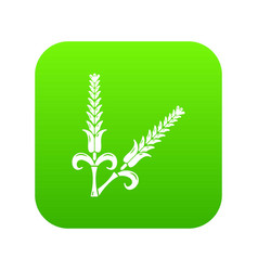 High wheat icon green vector