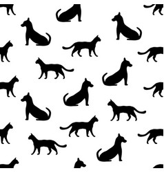seamless background with cat and dog vector image