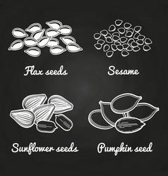 sesame pumpkin sunflower flax seeds on vector image