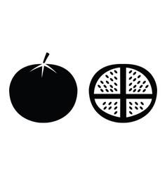 tomato vegetable icon vector image