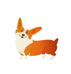 happy dog welsh corgi the style flat vector image vector image