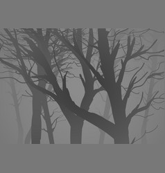 silhouette of a misty dark woods vector image vector image