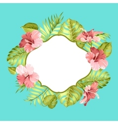 Tropical flower frame vector image