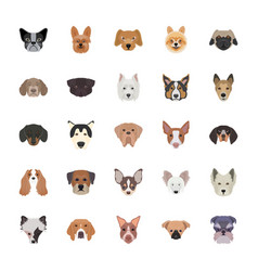 Breeds of dogs flat icons vector