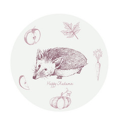 Hand drawn hedgehogon with autumn plants and fr vector