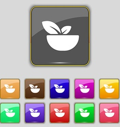 Organic food icon sign Set with eleven colored vector