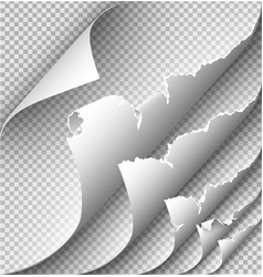 page curl with shadow on blank sheet paper for vector image