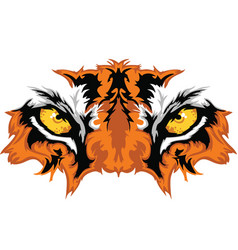 tiger eyes vector image