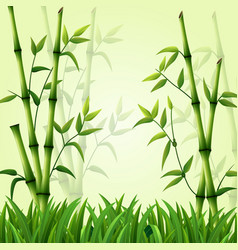 bamboo background with grass vector image