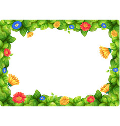 Beautiful gerbera flower frame vector