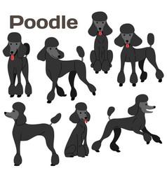 Black poodledog in actionhappy dog vector