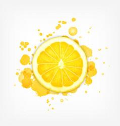 Lemon slice with splash vector