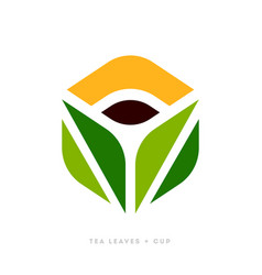 logo template or icon of green tea leaves and cup vector image