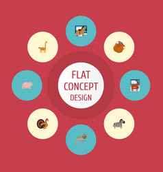 flat icons camelopard horse moose and other vector image vector image