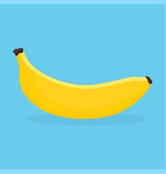 banana on blue background vector image