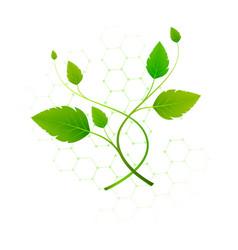 Botanical light floral concept vector