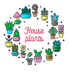 House plants and garden flowers poster vector
