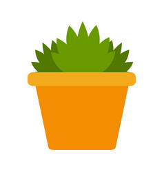 indoor green flower in a ceramic pot flat isolated vector image